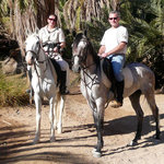 Horseriding Dahab