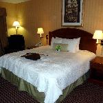 Фотография Hampton Inn & Suites Sacramento-Cal Expo