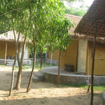 Tajpur Nature Camp照片