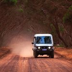 Touring backroads, Exceptional Kangaroo Island Tours