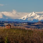 Travel Langhe Private Wine Tours