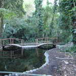 Jardin Botanico La Laguna