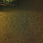 Carpet in room - stained