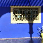  Le jardin Majorelle
