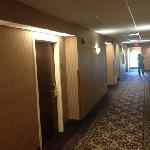 Comfort Inn & Suites Jupiter照片