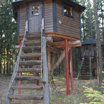 Forest village hut, sleeps 3