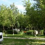 Shady places for tents, caravans and campers in Camping Pap-sziget Szentendre, by Budapest