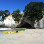Coromandel Adventures - Day Tours