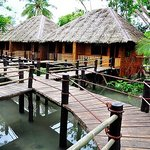 ‪Loboc River Resort‬