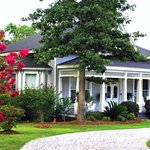 Sweet Gum Bottom B&B