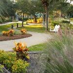 Sonesta Resort Hilton Head Island Foto