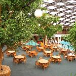 Indoor Patio