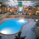  Pool Atrium