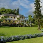 Ottley's Plantation Inn St. Kitts