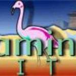 Flamingo Suites Foto