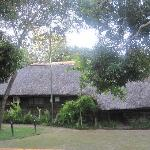 Foto de Tzaneen Country Lodge