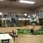 Φωτογραφία: Regency Inn & Suites Opelousas