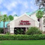 Foto de Hampton Inn & Suites Tampa - North