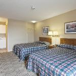 Studio Suite - 2 Double Beds