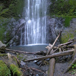 Marymere Falls Trail