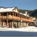  RZIGL