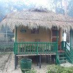 Nature-Hunt Eco Camp Kaziranga resmi