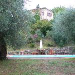 Main house from pool