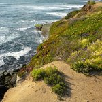 ‪Sunset Cliffs Natural Park‬