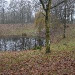 Hill 40 mine crater, Ieper, Belgium