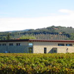 Azienda Agricola Serni Fulvio Luigi