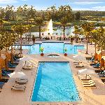 Waldorf Astoria Orlando Swimming Pool