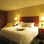 Hampton Inn Toledo South Maumee resmi
