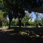 Φωτογραφία: BIG 4 North Cedars Holiday Park Wangaratta