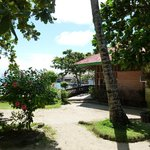 Photo of Anemone Resort and Tours, Cebu Lapu Lapu