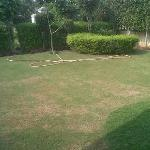  Lawn inside Villa