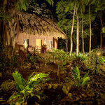 Foto di Mariposa Jungle Lodge
