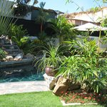  The pool, garden and the waterfall (from one of the sundbeds).