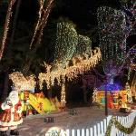 Santa's Enchanted Forest - M