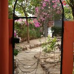View through the gate at villa