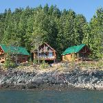 New rental cabins