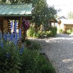 Bilde fra The Log Cabin Motel