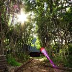 Path to the Luxury Guesthouse