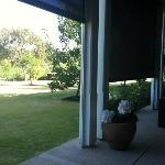 looking out from the patio to the beautiful vineyards