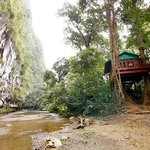 Romance Tree House next to Cliff and River, Khao Sok