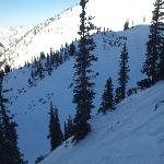  One of Snowbird&#39;s many chutes