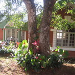 Nestinggrounds Home Stay