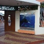 Blue Marlin Hotel main enterance