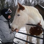 Visiting the horse, Apache, at the Homestead Lodge.