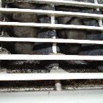 Mold in a/c unit vents