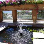 Fishpond on guest sundeck